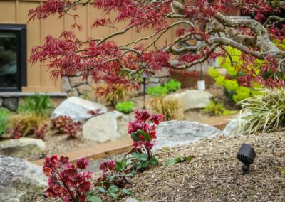 Landscape boulders and plants in Bremerton, WA