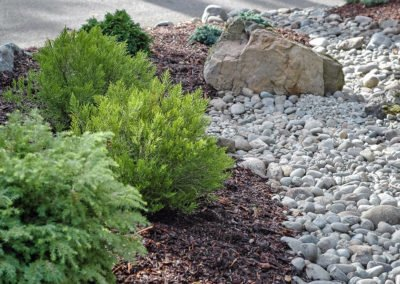 Evergreen shrubs and dry creek bed in Silverdale, WA