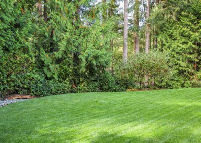Residential lawn and landscape services