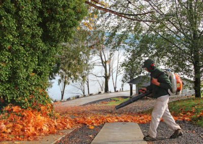 Fall leaf clean-up
