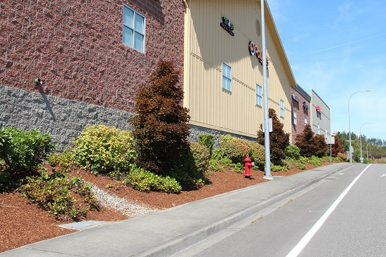 commercial landscape maintenance kitsap county